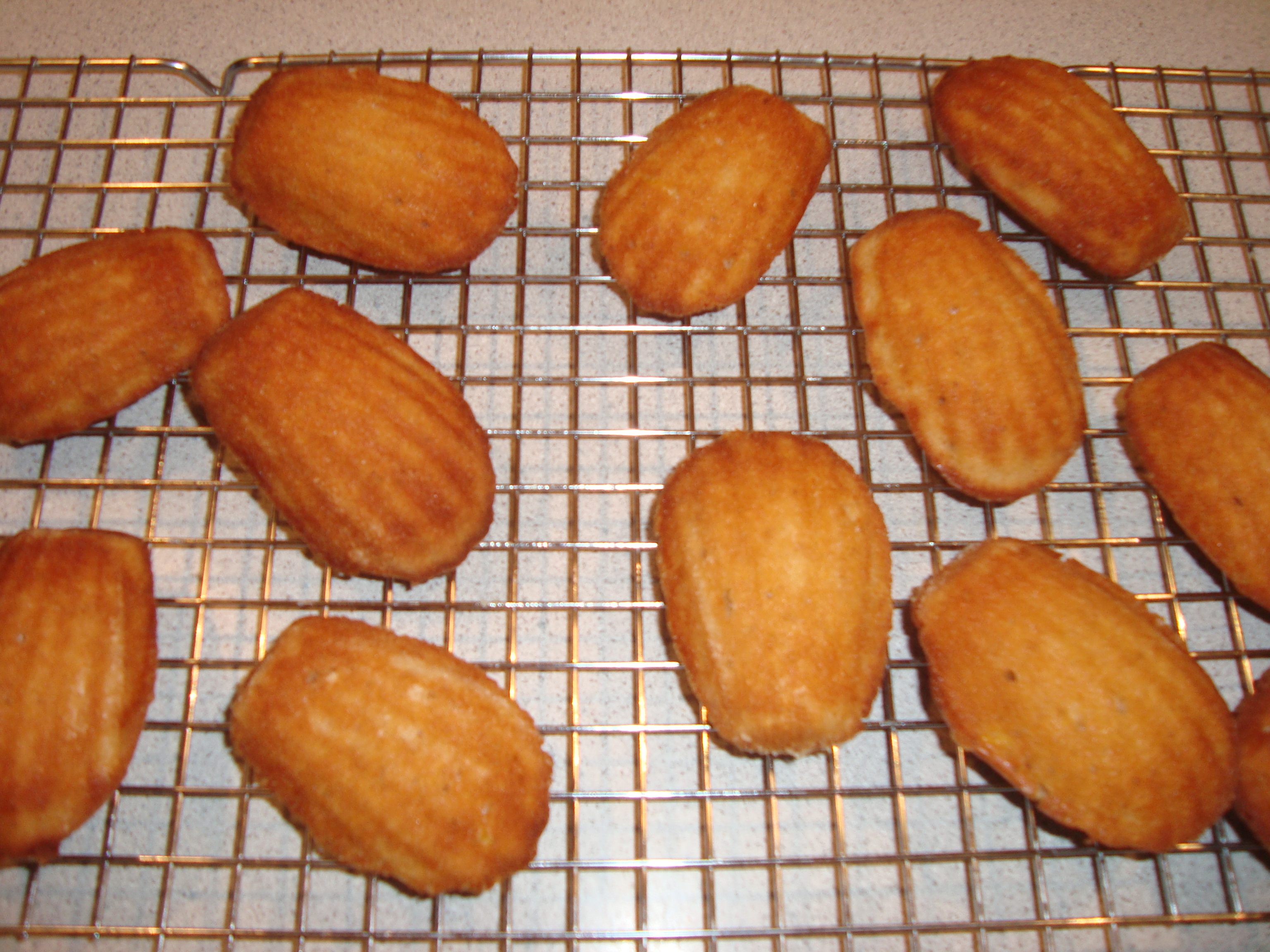 ... Fridays with Dorie: Honey-Spiced Madeleines | A Plateful of Happiness