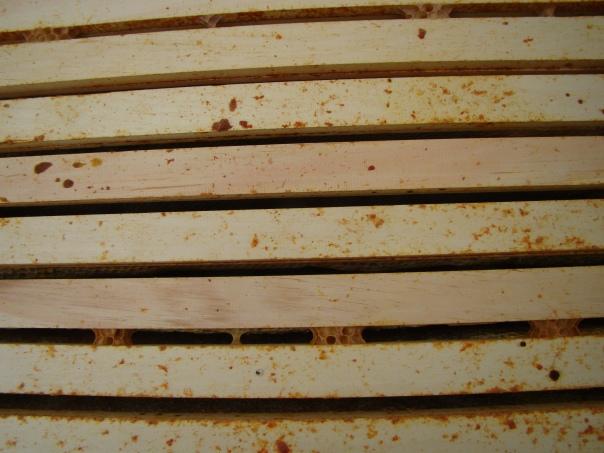Empty Hive