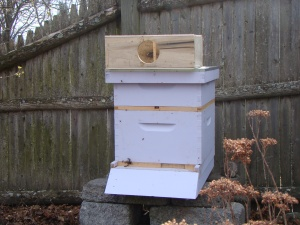 Hive with empty package on top