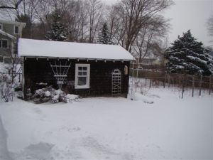 Jan 3 snowstorm