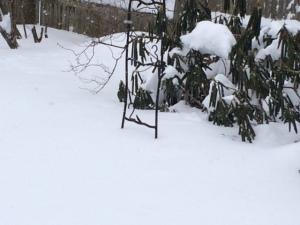 snow2feet