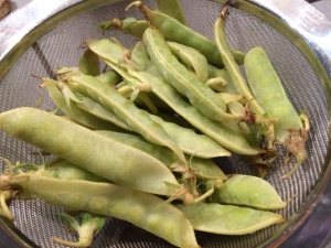 Golden Snow Peas