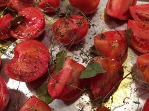 Tomatoes Before Drying