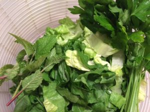 Lettuce Plus Parsley and 3 kinds of garden-fresh mint!