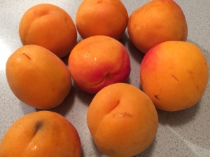 2 pounds of giant apricots